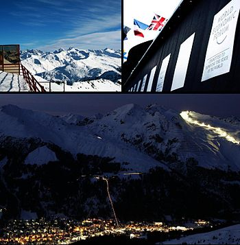 English: Montage for the Davos article on Wiki...