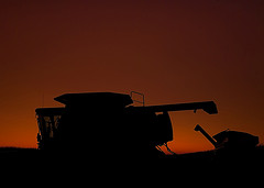 Combine at sunset
